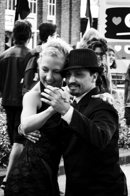 tango_11web
